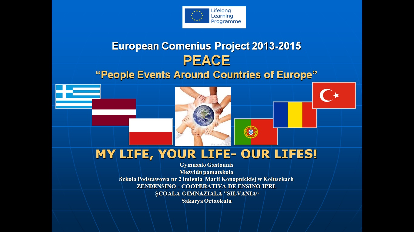 Comenius Flyer